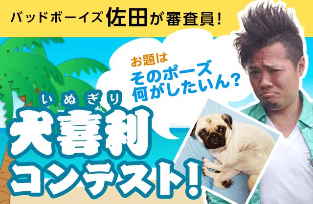 よしもとコラボ「犬喜利」開催中!バッドボーイズ佐田からのお題にワンコの写真でボケちゃおう♪