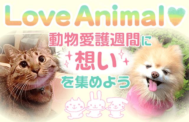 Love Animal 動物愛護週間に想いを集めよう