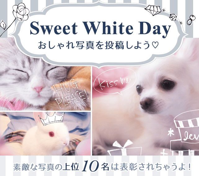 Sweet White Day おしゃれ写真を投稿しよう♥