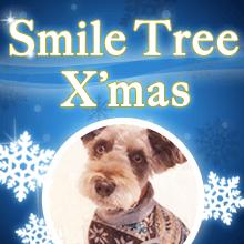 Smile Tree Xmas♪