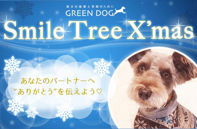 """Smile Tree X'mas あなたのパートナーへ""""ありがとう""""を伝えよう"""