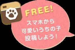 FREE! スマホから可愛いうちの子投稿しよう!