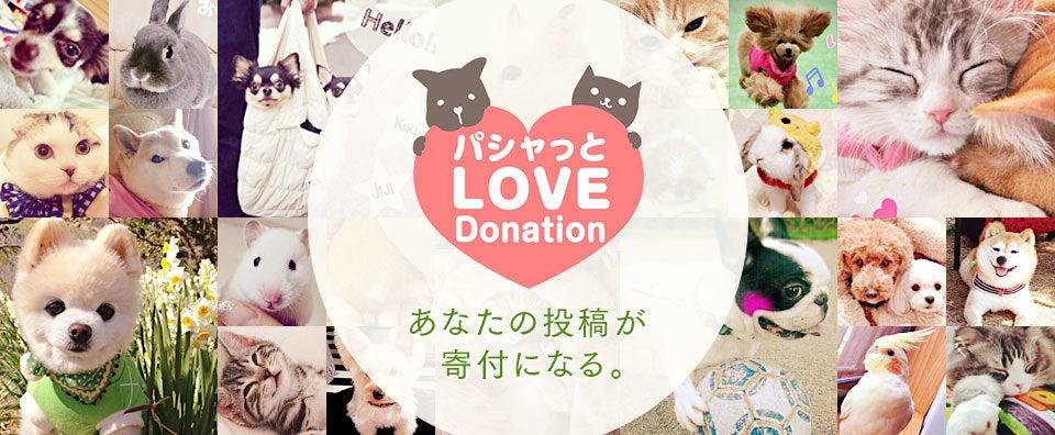 パシャっとLOVE Donation あなたの投稿が寄付になる。