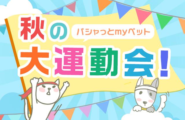 パシャっとmyペット秋の大運動会!