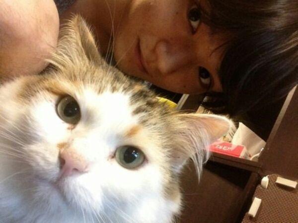 猫と古川雄輝